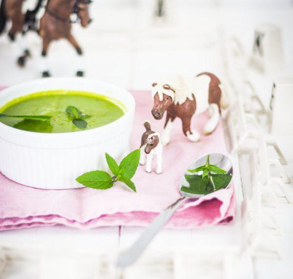 Kochen für Kinder: Suppe für kleine Pferdefreunde