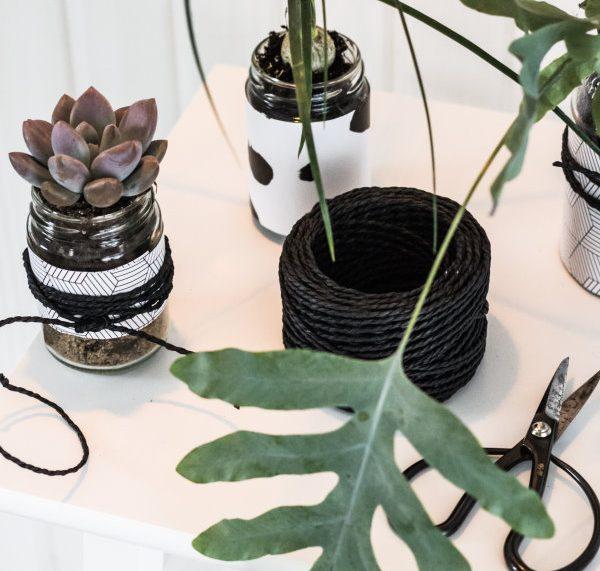 Upcycling DIY: Ein Kleiner Urban Jungle Und 10 Ideen, Plastik Im Alltag Zu  Vermeiden