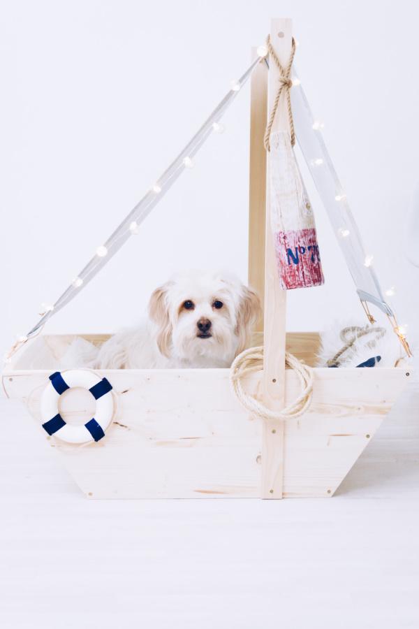 Ahoi und Leinen los: Ein Segelboot als DIY Hundebett! • Titatoni