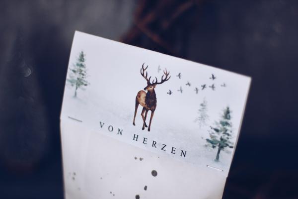 DIY Geschenkverpackung zu Weihnachten gratis zum Ausdrucken. Geschenke zu Weihnachten schön verpacken.Titatoni.de