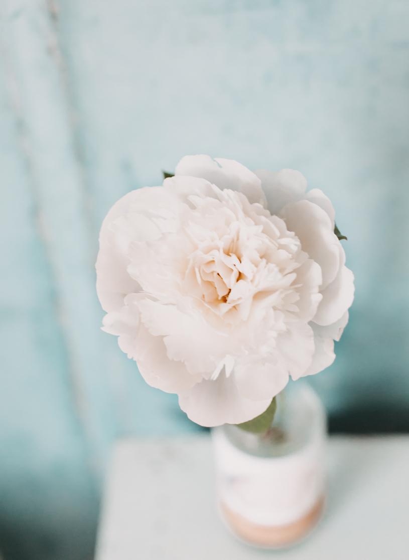 Zum Muttertag: DIY Blumenvase mit Spruch. Perfektes Geschenk basteln. titatoni.de