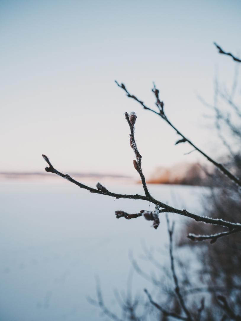 Winter-Impressionen am Bothkamper See in Schleswig-Holstein. titatoni.de